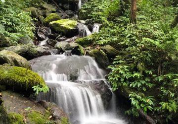 Guide to a Relaxing One-Day Trip in Jiaoshi Yilan