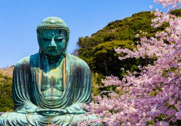 Kamakura in Spring: Walk through History and Breathtaking Flower Blossom