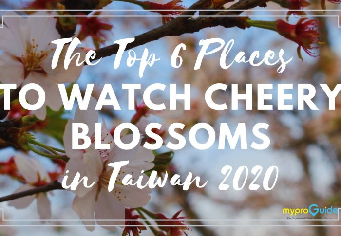 The Top 6 Places To Watch Cheery Blossoms in Taiwan 2020