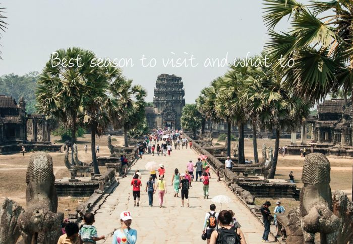 Traveling Guide to Cambodia: Things to Do, Where to Go and Traveling Tips