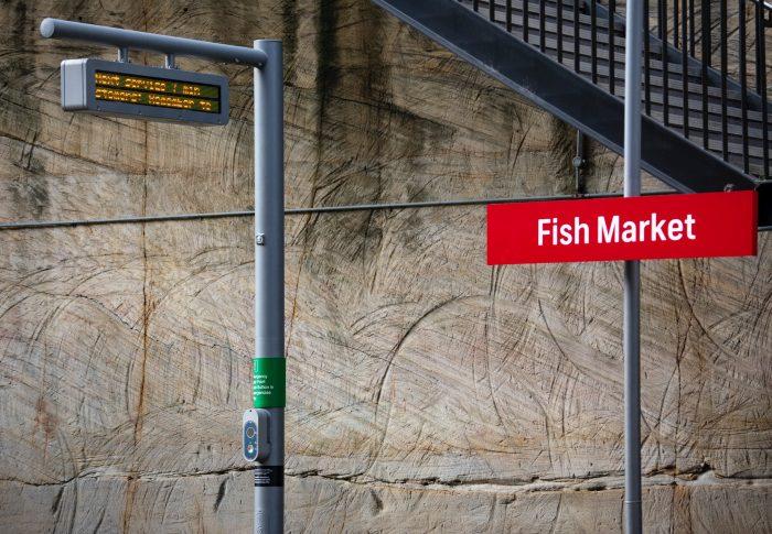 7 Best Fish Markets In Japan