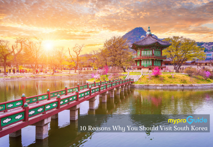 10 Reasons Why You Should Visit South Korea